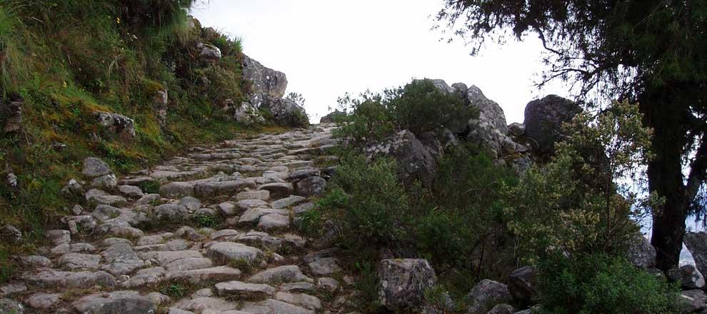 Camino del Inca
